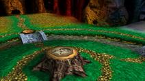 Bosque del reloj 2