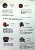 Kazoo Development Documents 08 - Sports