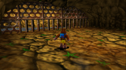 Banjo-Tooie Behind the Waterfall