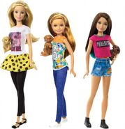 Puppy Chase Sisters Doll Assortment 1