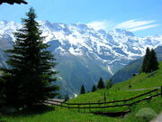 A Spring wiew of the Alps