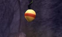 Immunity Berry