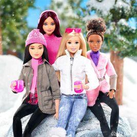 Barbiewikihomepage2017holidaypic