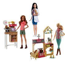 Barbie Pet Vet Play Kit FPM74