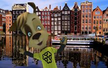 Amsterdam-amsterdam-nederland-6514