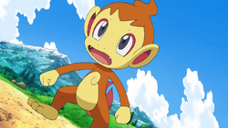 Mars Chimchar