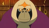 Hau Oranguru