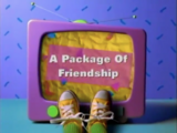 A Package Of Friendship