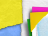 Home Sweet Earth: The Rainforest