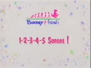 12345 Senses Title Card