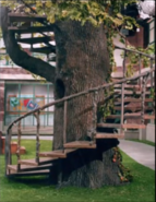 TreehouseStairs