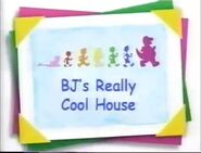 BJ's Really Cool House