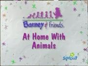 At Home with Animals Tittle Card!