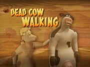 Back at the Barnyard Dead Cow Walking
