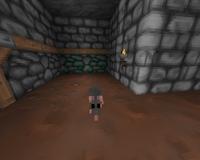 Level1-5, rat