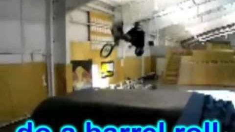Everyone Do A Barrel Roll!!!!!!