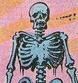 Adanna-skeleton.jpg