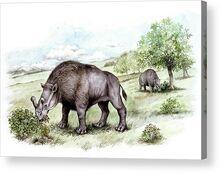 Brontotherium-prehistoric-mammals-deagostiniuig