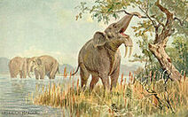 220px-Dinotherium