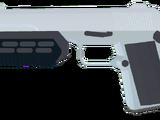 DkP-13
