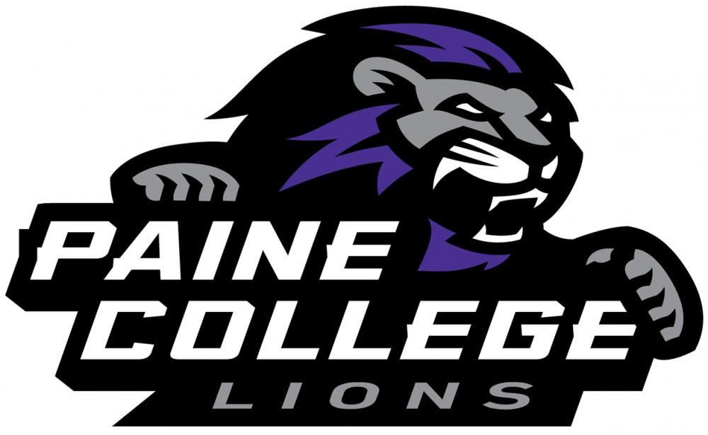 Image result for paine lions image