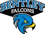 Bentley Falcons