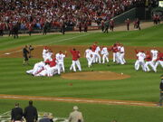 World Series 2011 Cardinals Victory Pile