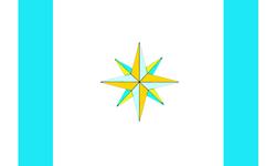 IGSA Flag
