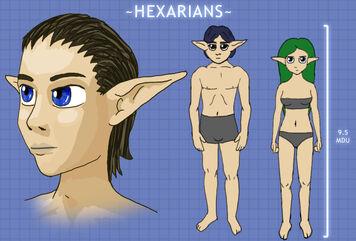 HexarianDiagram
