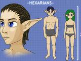 Hexarian