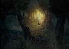 Moonguile Forest entrance