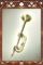Shining Trumpet