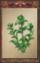 Herb (Origins)