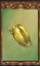 Gold Beetle Carapace (Origins)