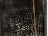 Jiao's Sketchbook