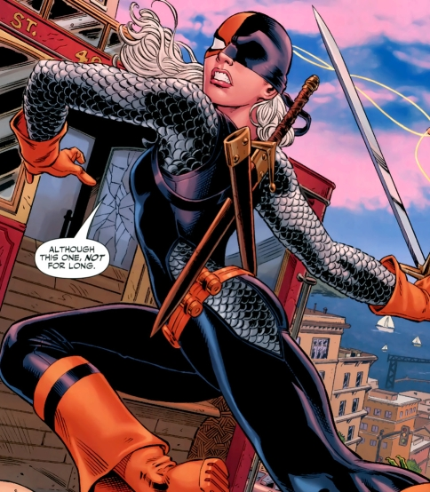 Jason Todd And Rose Wilson Rose Wilson Ravager Iii T