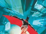 Batman (Terry McGinnis)