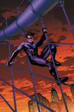 Nightwing07