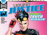 Young Justice Vol.3 15