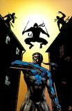 Nightwing Ninja