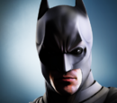 The Dark Knight Rises (Video Game)