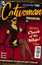 Catwoman Vol 4-32 Cover-2
