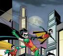 Robin (Disambiguation)