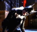 Catwoman (Birds of Prey)