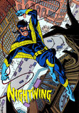 334px-Nightwing 0001