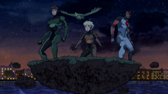 Young Justice - Los Outsiders