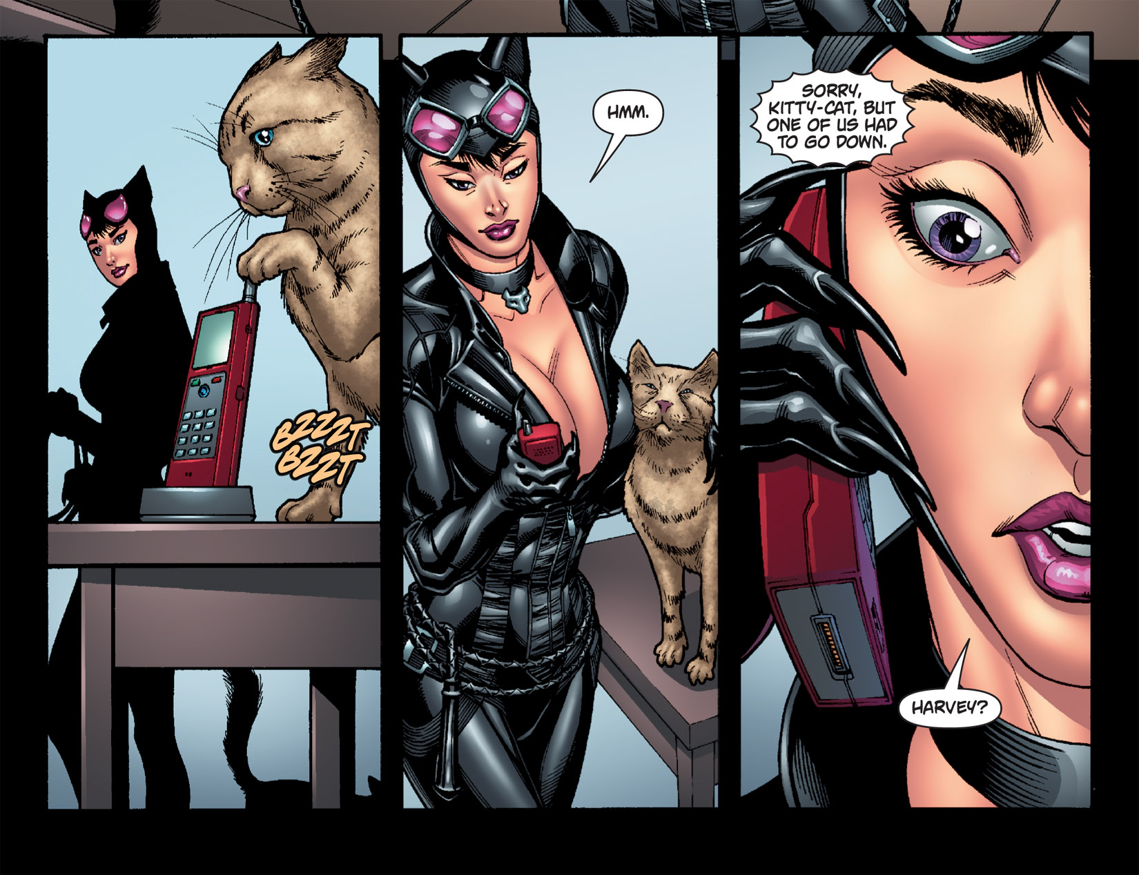 Catwoman sex games