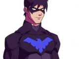 Nightwing (Young Justice)