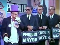Pinguinbm24