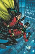 Red Robin vs Robin